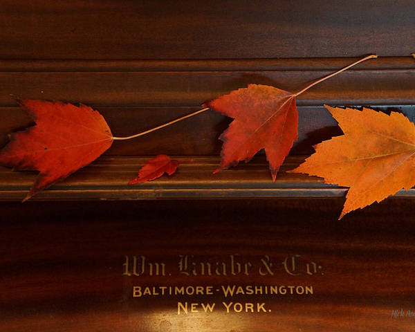 Autumn Poster featuring the photograph Autumn Piano 3 by Mick Anderson