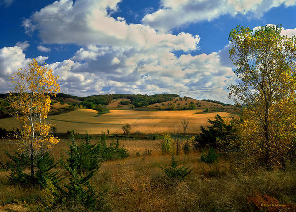 Landscape Poster featuring the photograph Autumn Skies by Bruce Morrison