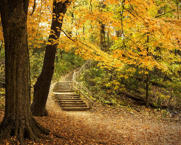 Autumn Poster featuring the photograph Autumn Stairs by Scott Norris