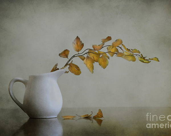 Still Life Poster featuring the photograph Autumn Still Life by Diana Kraleva