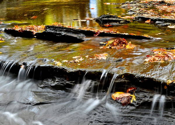 Autumnal Poster featuring the photograph Autumnal Serenity by Frozen in Time Fine Art Photography