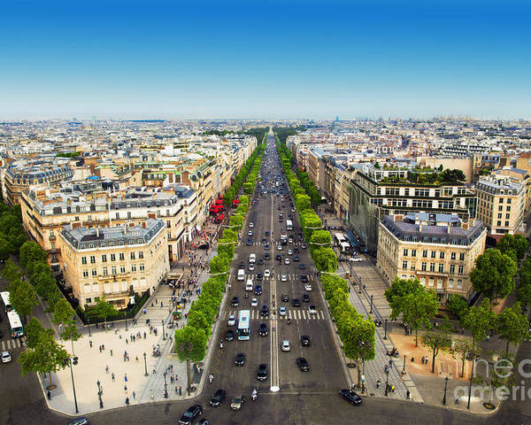 Elysees Poster featuring the photograph Avenue Des Champs Elysees In Paris  France by Michal Bednarek 2f3a834b30508