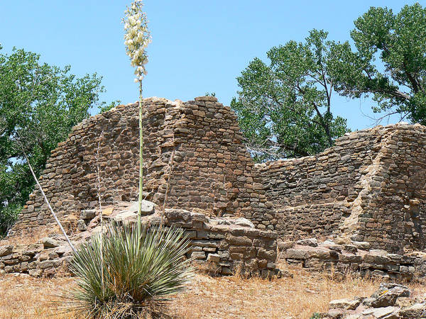 Aztec Ruins National Monument Poster featuring the photograph Aztec Ruins National Monument by Laurel Powell