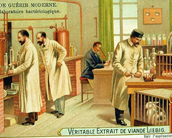 Bacteriological Poster featuring the photograph Bacteriological Laboratory by Universal History Archive/uig