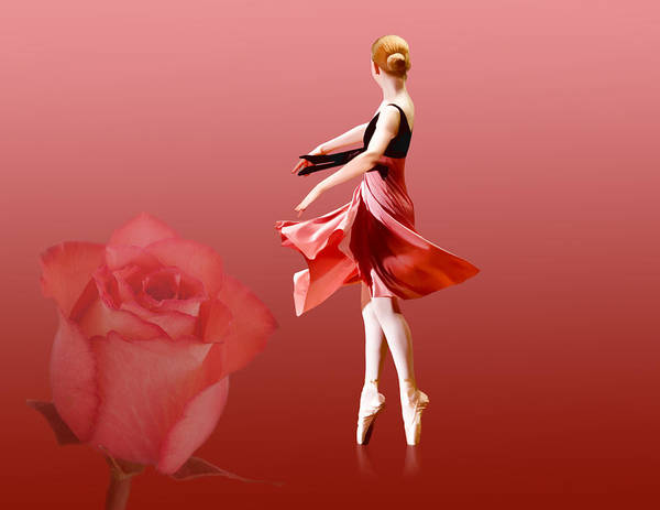 Ballet Poster featuring the photograph Ballerina On Pointe With Red Rose by Delores Knowles
