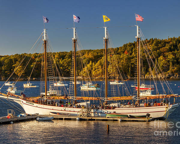 4 Masted Poster featuring the photograph Bar Harbor Schooner by Brian Jannsen