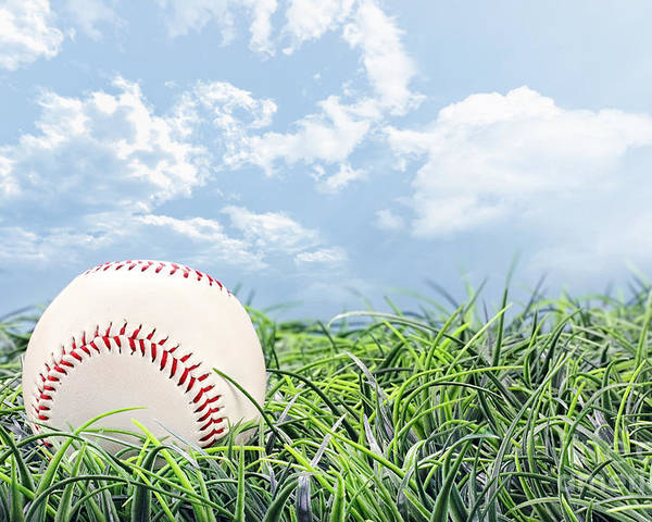 Baseball Poster featuring the photograph Baseball In Grass by Stephanie Frey