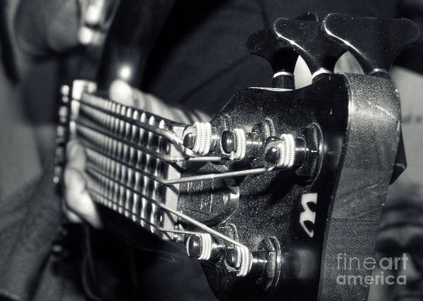 Art Poster featuring the photograph Bass by Stelios Kleanthous