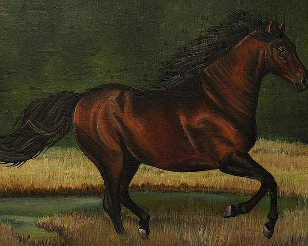 Horse Poster featuring the painting Dark Horse by Lucy Deane