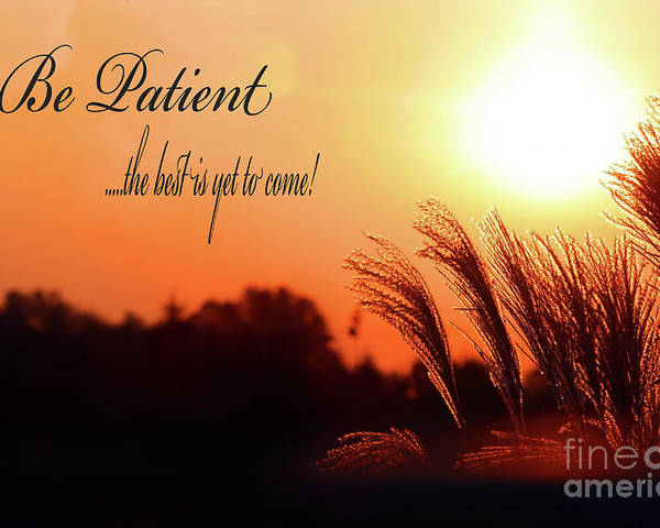 Patience Poster featuring the photograph Be Patient by Cathy Beharriell