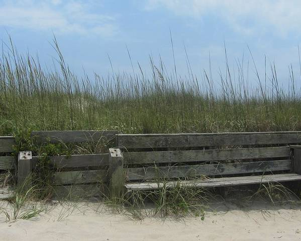 Hatteras Poster featuring the photograph Beach Grass And Bench by Cathy Lindsey