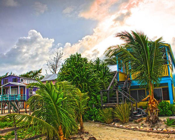 Caye Caulker Poster featuring the photograph Beach In Front Of Colinda's Cabanas by Lee Vanderwalker
