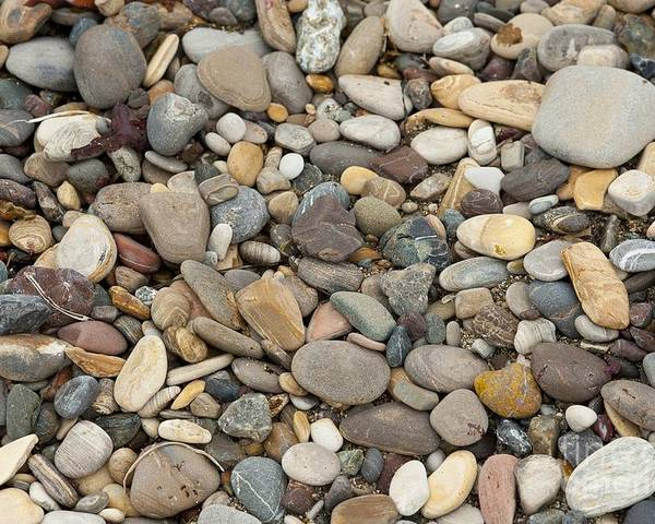 Ocean Poster featuring the photograph Beach Rocks by Artist and Photographer Laura Wrede