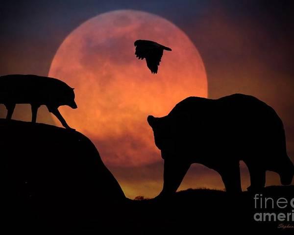 Bear Wolf and Hawk by Stephanie Laird