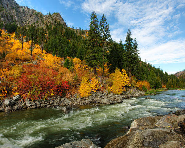 Fall Poster featuring the photograph Beautiful Autumn by Dan Mihai