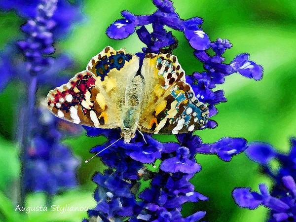 Augusta Stylianou Poster featuring the digital art Beautiful Butterfly On A Flower by Augusta Stylianou