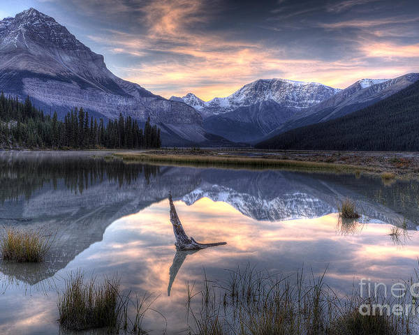 Beauty Creek Poster featuring the photograph Beauty Creek Pre-dawn by Brian Stamm