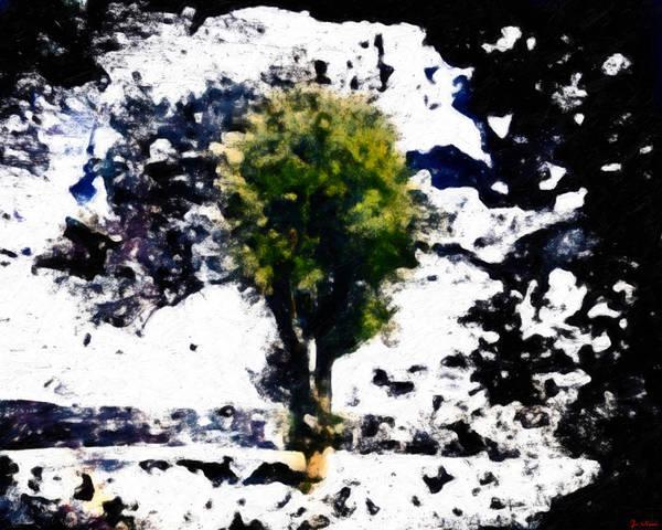 Tree Poster featuring the digital art Behold by Joe Misrasi