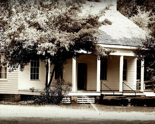 Bellevue Poster featuring the photograph Bellavue Plantation by Debra Forand