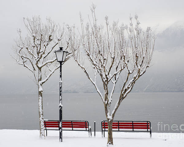 Bench Poster featuring the photograph Bench On Lakefront In Winter by Mats Silvan