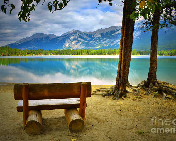Bench Poster featuring the photograph Bench View At Lake Edith by Tara Turner