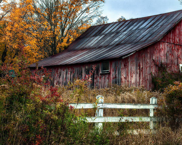 Barn Poster featuring the photograph Berkshire Autumn - Old Barn Series  by Thomas Schoeller