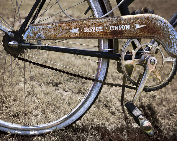 Appalachia Poster featuring the photograph Bicycle Gears by Debra and Dave Vanderlaan