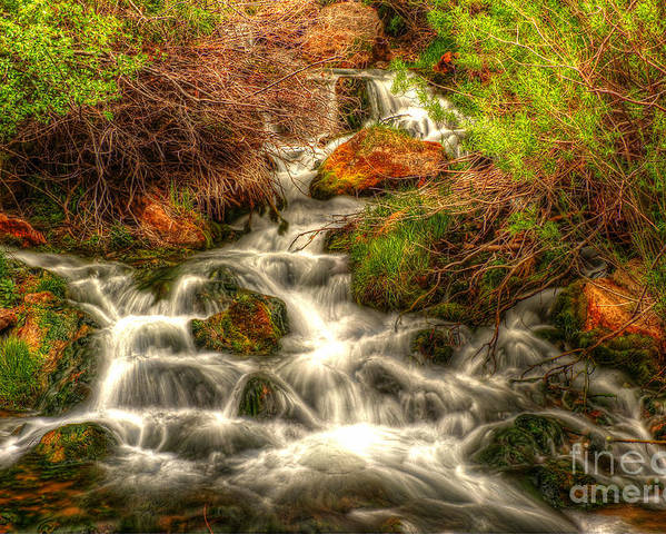 Sheep Creek Canyon Poster featuring the photograph Big Spring In Sheep Creek Canyon by Dennis Hammer