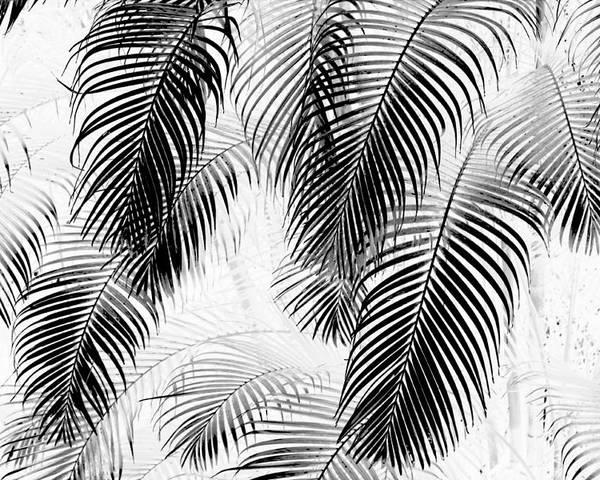 Karon Melillo Devega Poster featuring the digital art Black And White Palm Fronds by Karon Melillo DeVega