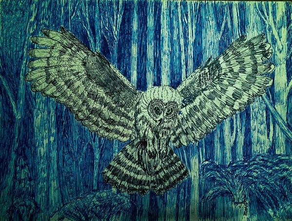 Black Owl On Blue Night Poster featuring the drawing Black Owl On Blue Night by Rodger Larson