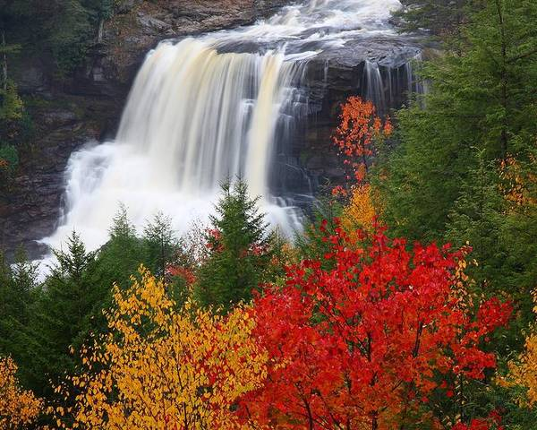 Blackwater Poster featuring the photograph Blackwater Falls In Autumn by Jetson Nguyen