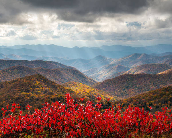 Autumn Poster featuring the photograph Blue Ridge Parkway Fall Foliage - The Light by Dave Allen