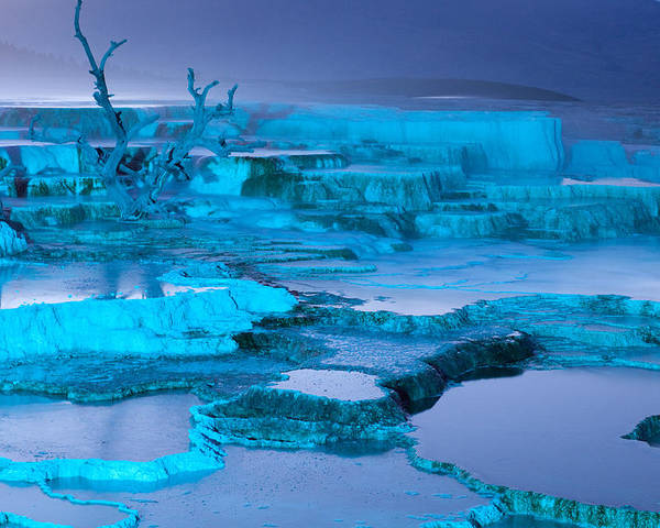 mammoth Hot Springs Poster featuring the photograph Blue Terrace by John Richardson