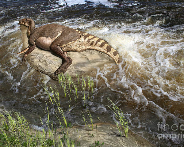 Dinosaur Digital Art Poster featuring the digital art Brachylophosaurus canadensis corpse by Julius Csotonyi