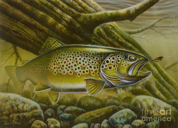 Jon Q Wright Poster featuring the painting Brown Trout Log by Jon Q Wright