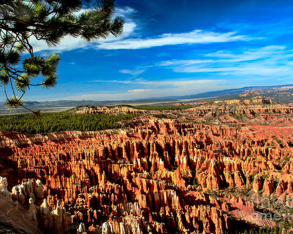 Rock Formations Poster featuring the photograph Bryce by Robert Bales