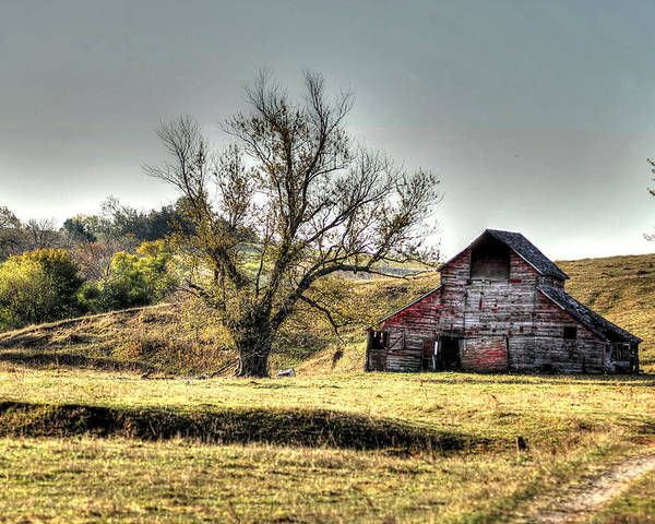 Barn Poster featuring the photograph Bucolic by Thomas Danilovich