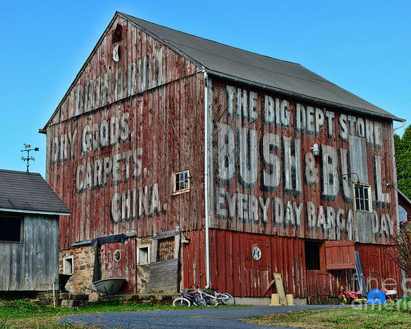 Paul Ward Poster featuring the photograph Bush And Bull Roadside Barn by Paul Ward