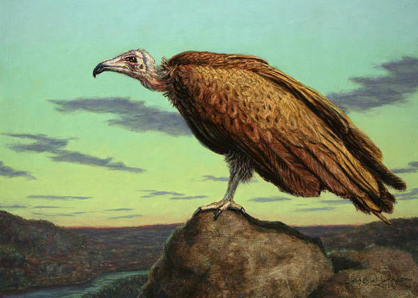 Buzzard Poster featuring the painting Buzzard Rock by James W Johnson