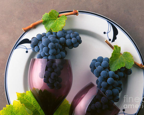 Craig Lovell Poster featuring the photograph Cabernet Grapes And Wine Glasses by Craig Lovell