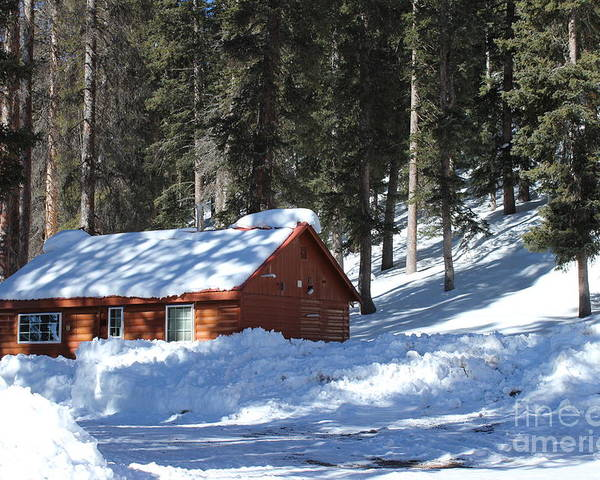 Grand Mesa Poster featuring the photograph Cabin On Grand Mesa Co by Dale Jackson