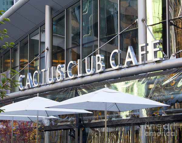 Cactus Club Poster featuring the photograph Cactus Club by Chris Dutton
