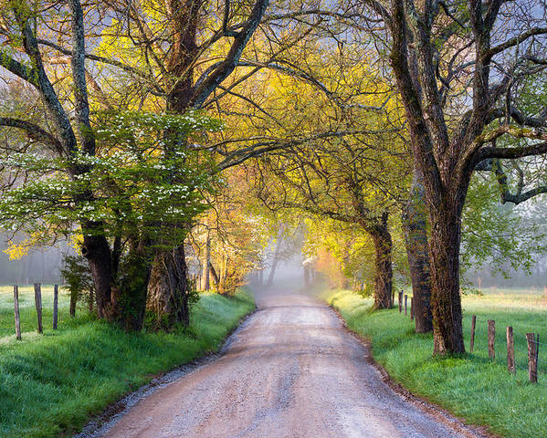 Cades Cove Poster featuring the photograph Cades Cove Great Smoky Mountains National Park - Sparks Lane by Dave Allen