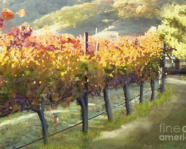 Corde Valle San Martin Ca Poster featuring the painting California Vineyard Series Morning In The Vineyard by Artist and Photographer Laura Wrede