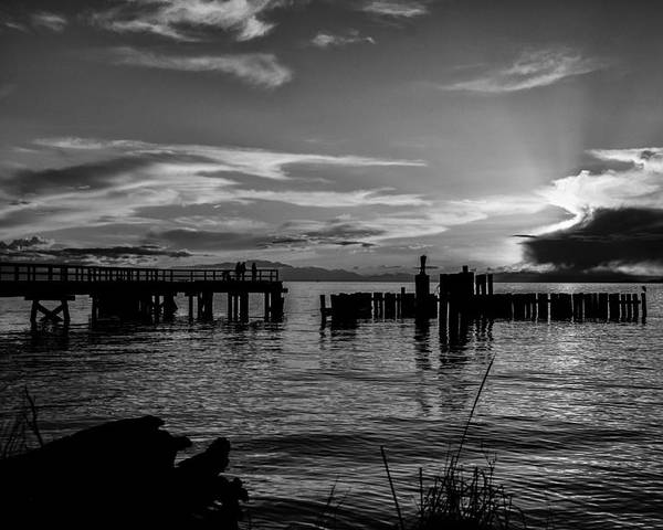 Black And White Poster featuring the photograph Canadian Sea by Kelly Hayner