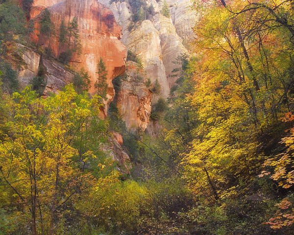West Fork Oak Creek Canyon Poster featuring the photograph Canyon Kaleidoscope by Peter Coskun