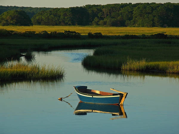 Blue Poster featuring the photograph Cape Cod Quietude by Juergen Roth