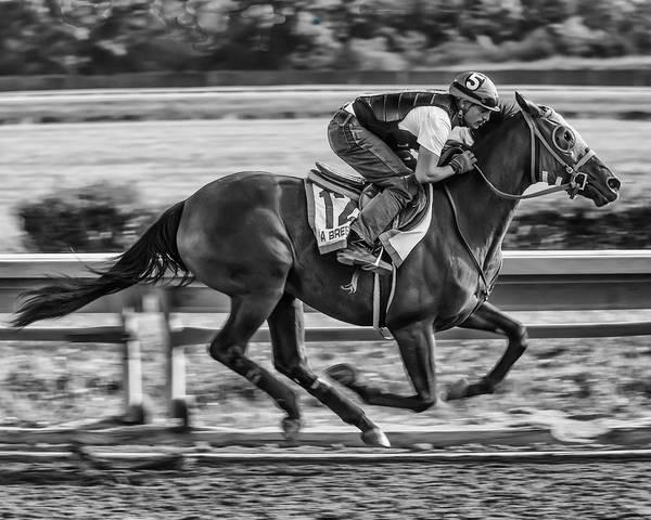 Race Horse Thoroughbred Jockey Gallop Running Track Racetrack Beulah Park Ohio Warm-up Workout Morning Finish Line Poster featuring the photograph Carousel Race Horse by Richard Marquardt