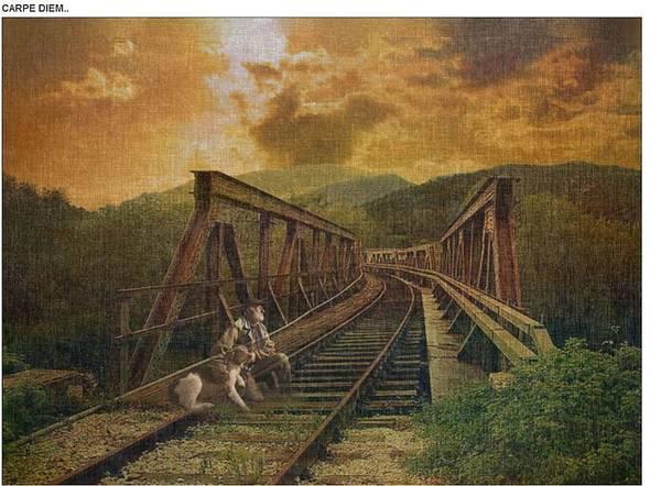 Skys Poster featuring the photograph Carpi Diem by Virginia Lankford-Dillman