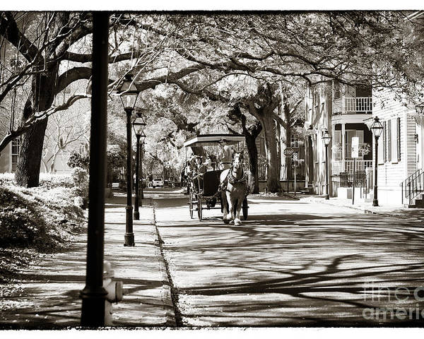Carriage Ride In Charleston Poster featuring the photograph Carriage Ride In Charleston by John Rizzuto